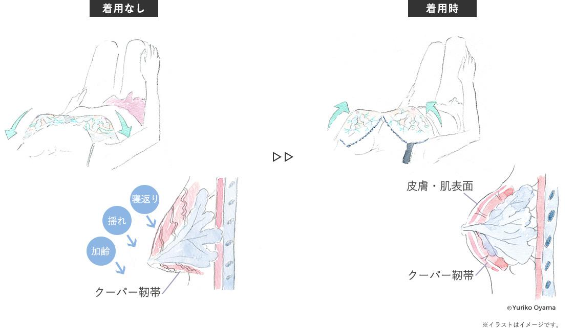 【着用なし】【着用時】比較イラスト©Yuriko Oyama