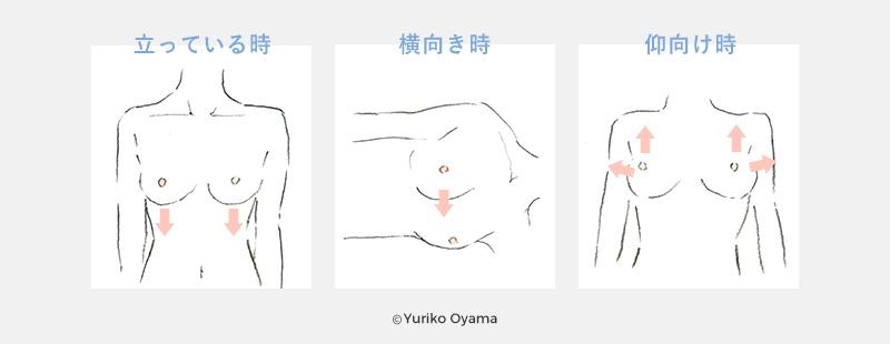 【カラダの状態と重力の関係性】イラスト|立っている時・横向き時・仰向け時©Yuriko Oyama